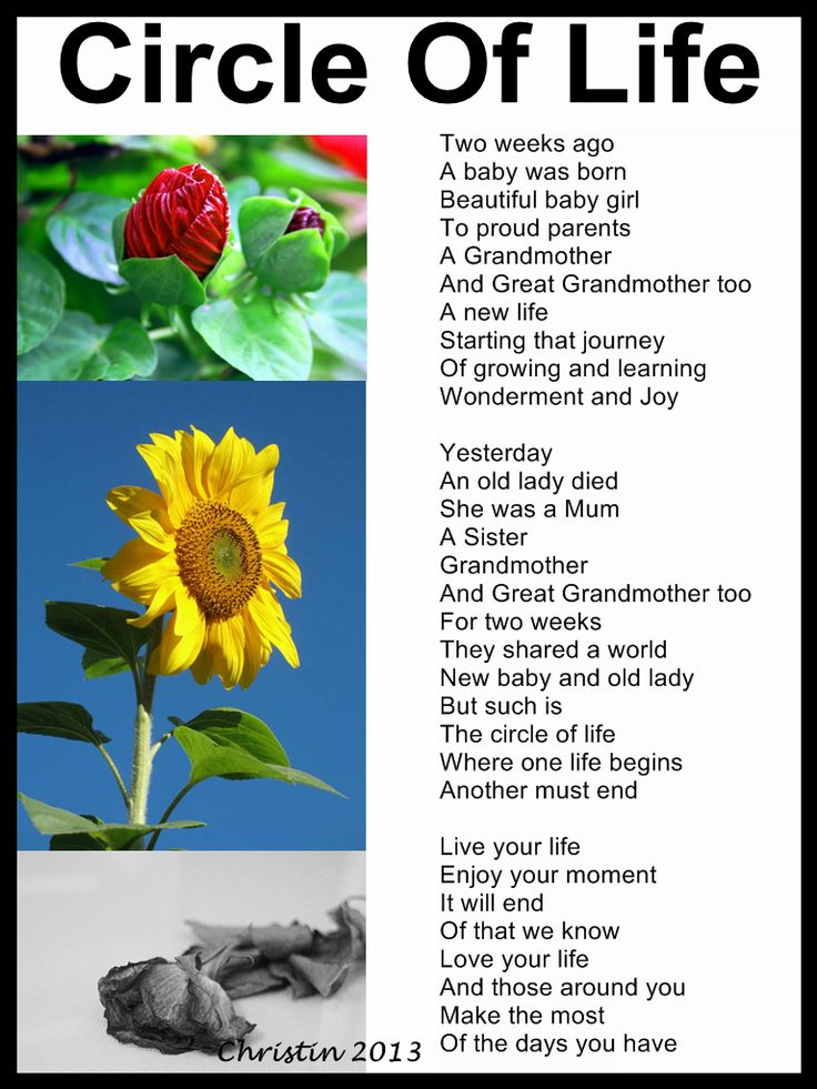 a poem about love and life Search over 650,000+ poems by theme, form, subject, or word view lists of poems on all topics like love, famous, life, friendship, mother, acrostic, and funny see definitions and examples of every type of poetry.