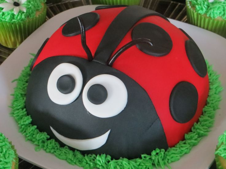 Lady Bug smash cake I made for 1 yr. old birthday.