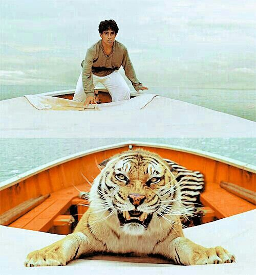 One of my favorite movies: Life Of Pi. Really nice photography