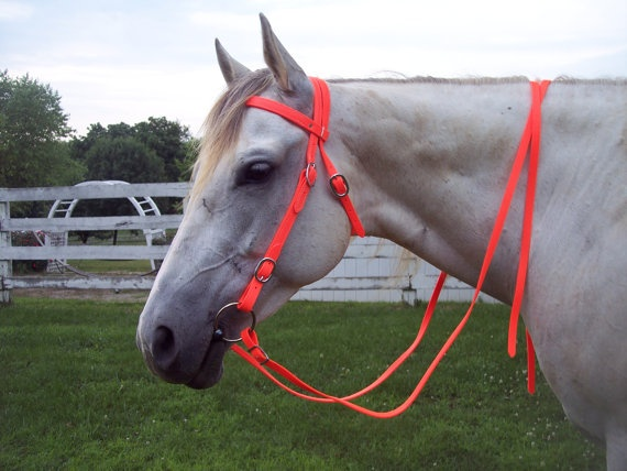 Any Size Hunters Orange WESTERN Horse BRIDLE & REINS by nar0402, $40.00