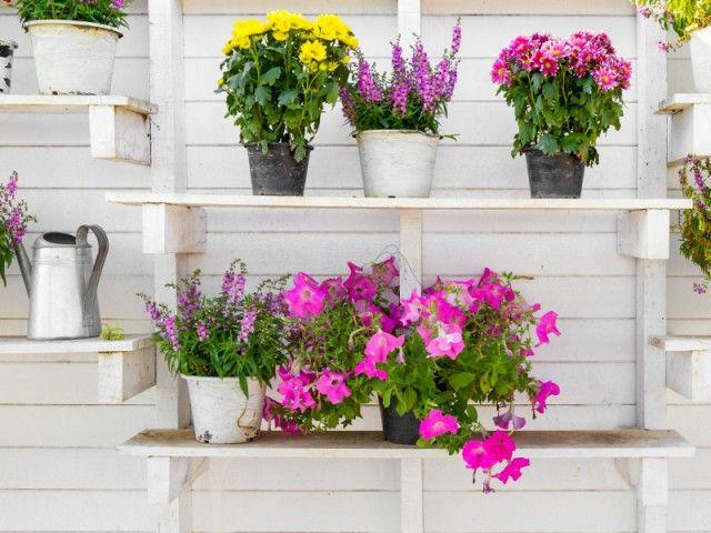25 Best Ideas About Etagere Palette On Pinterest Tag Res En Bois De R Cup Ration Rayonnage