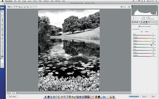 Photoshop CS to convert your photographs to black and white photos, and discover how to make them more striking using various tools in the Camera Raw editor and the main Photoshop