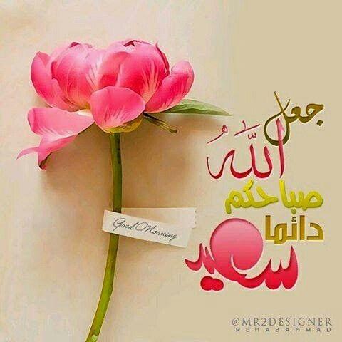 Ich Liebe Dich, Guten Morgen, Valentinstag, Morgen, Blume