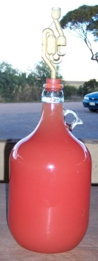 How To Make Mexican Watermelon Moonshine – This Recipe is Great For The Summer Cottage  – Learn to Moonshine
