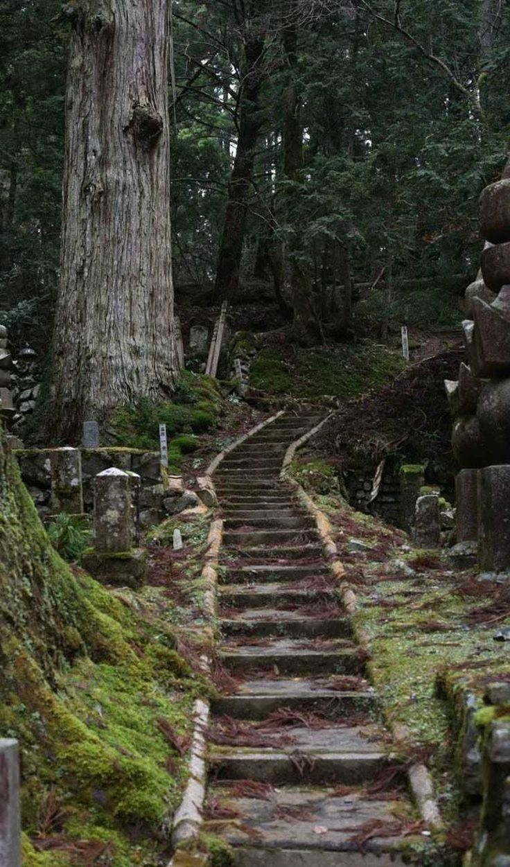 Mount Kōya and the Okunoin Cemetary, Japan. #destinations #travel