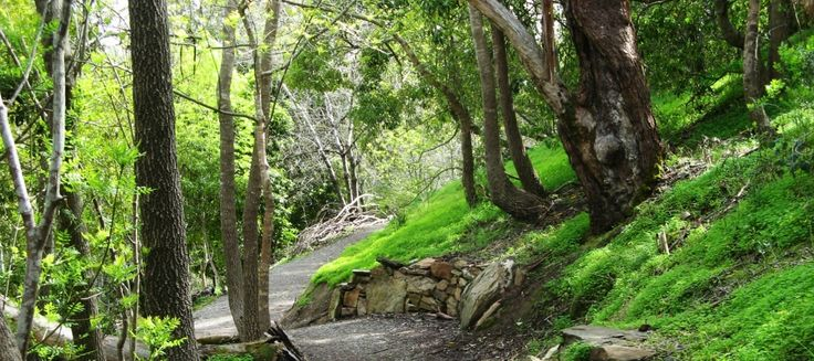 Five alternative walks to Mount Lofty-Good Living