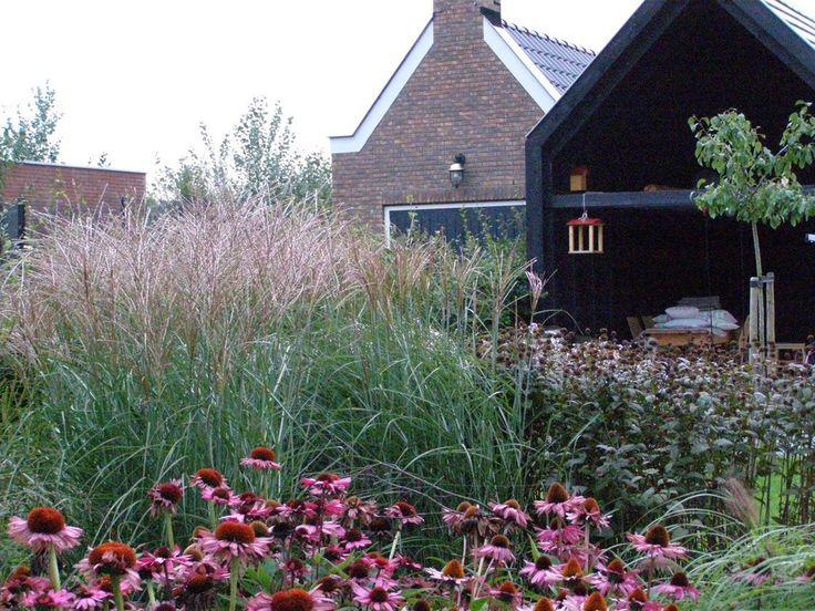 Kwekerij de Morgen - Dirk de Winter. Noord-Holland