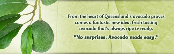 AvoFresh: Avocado made easy!