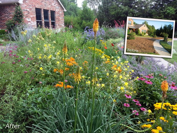 English garden with a Texas Twist. A before and after of Rajesth J.'s Dallas,TX home along w/ Q&A.  Complete plant list provided - most drought tolerant, low water requirements | High Country Gardens.