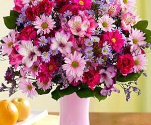 #Deluxe #Shower of #Flowers Item #Description: 6 purple/pink/lavendar daisy poms 5 purple butterfly asters 6 lavendar/pink mini carnations 8 pink/lavendar alstroemeria 4 lavendar limonium