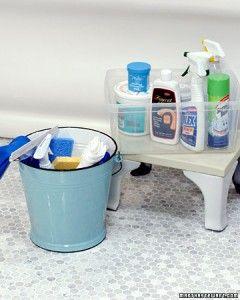 Wonderful bathroom cleaning tips from Martha Stewart