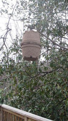 Linda's Bees: Making a Homemade Swarm Trap