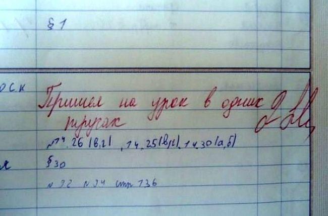Картинки приколы про школу в дневниках