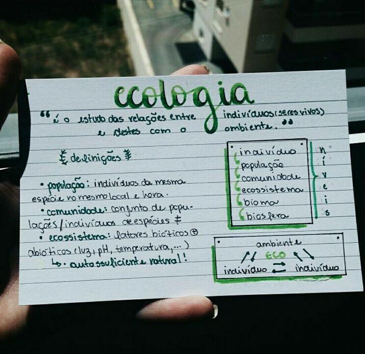 Ecologia pt 1