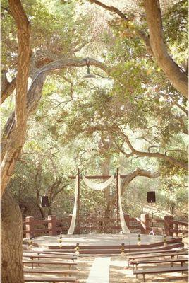 alterIdeas Wedding, Outdoor Wedding Photos, Romantic Wedding, Wedding Ideas, Dreams Wedding, Trees Branches, Outdoor Theater, Wedding Cake, Outdoor Weddings