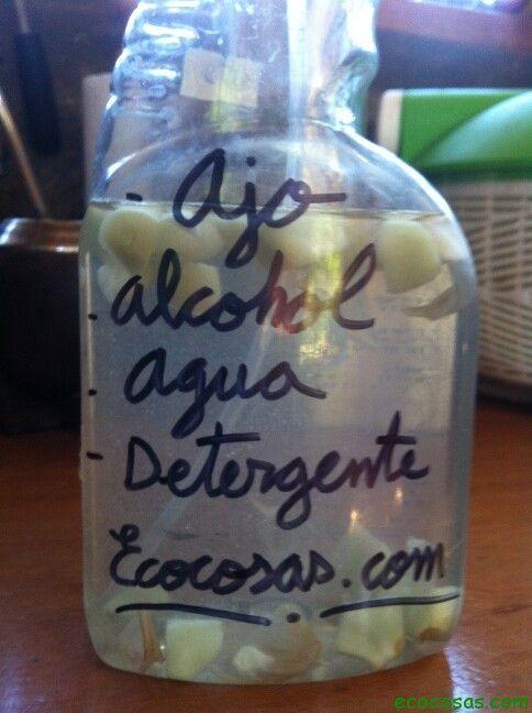 Les damos esta práctica receta de insecticida, repelente y fungicida, casero y #ecológico