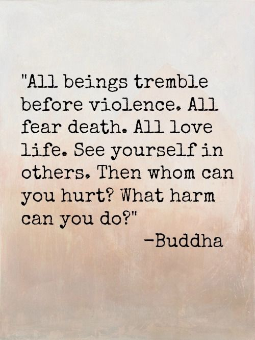 All beings tremble before violence. All fear death, all love life. See yourself in others. Then whom can you hurt? What harm can you do? -Buddha