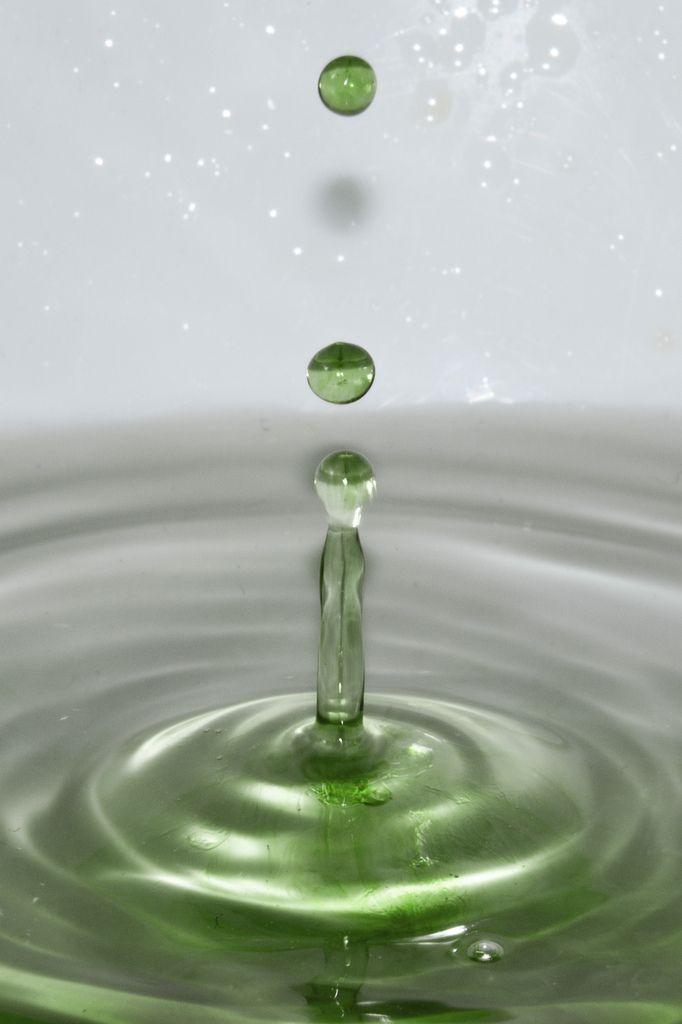 il_verde_gustavo_rol
