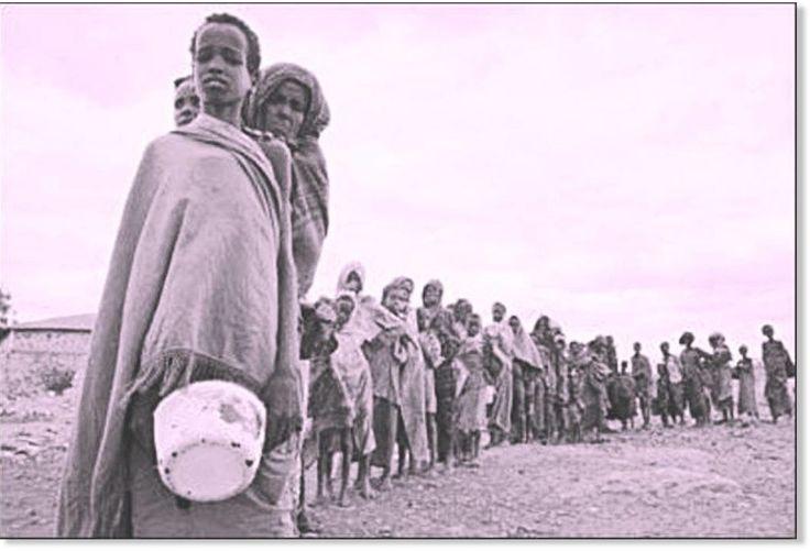 L'ONU annonce que la pire crise alimentaire depuis la Seconde Guerre mondiale arrive