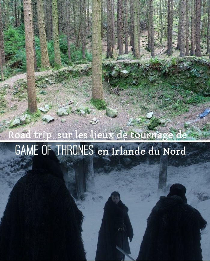 Road trip sur les lieux de tournage de Game of Thrones en Irlande de Nord : Tollymore forest Park ou la forêt hantée