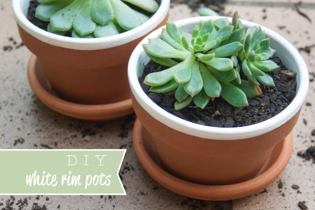 DIY white rim terracotta pots. Super simple pot plant craft idea.
