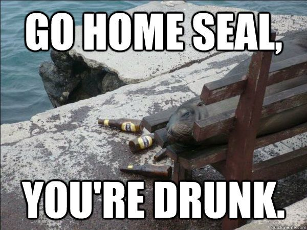 01ae716b2c38b6d8ec321d68cd4c5e15 drunk memes funny animals 37 best i love memes go home, you're drunk! images on pinterest,Go Home Bessie You Re Drunk Meme