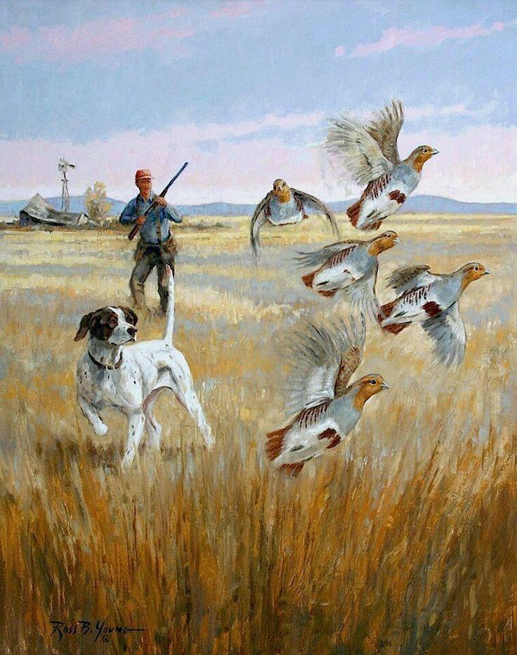 Best Ross Young Studios Wildlife Paintings Wildlife Art 400 x 300