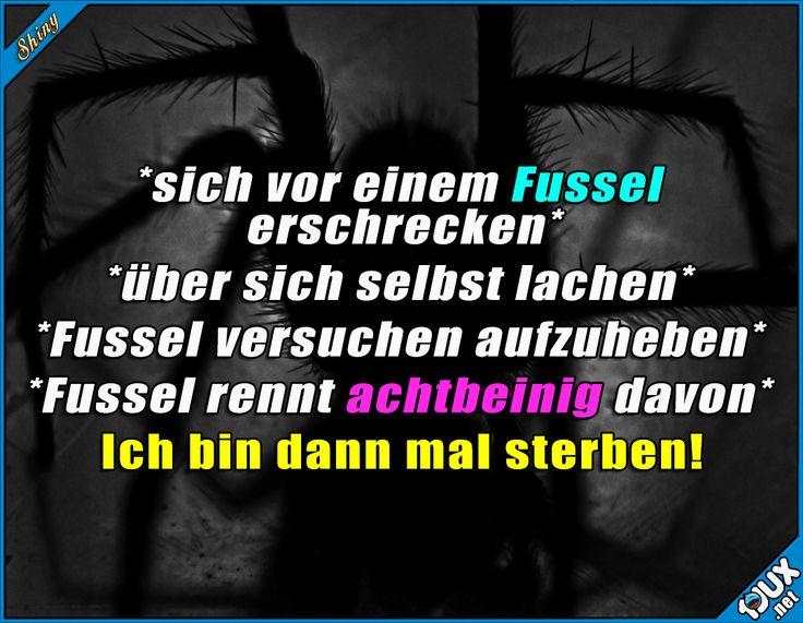 Traue niemals einem Fussel! x.x #Spinne #Spinnen #Sprüche #lustig #Jodel #fail #funny #SpruchdesTages