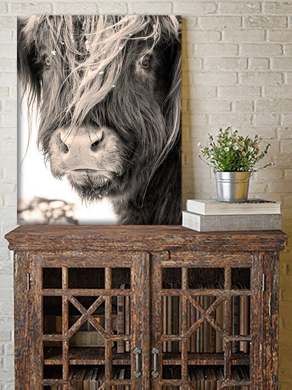 Canvas Wall Art Highland Cow Wall Art Highland Cow Poster Yak Etsy Cow Wall Art Cow Art Highland Cow Art
