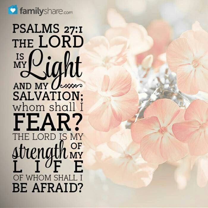 """""""The LORD is my light and my salvation; Whom shall I fear? The LORD is the strength of my life; Of whom shall I be afraid?"""" Psalms 27:1 NKJV"""