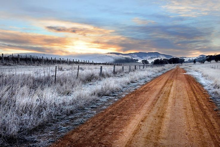 Spring Frost, Mudgee. By Amber Hooper