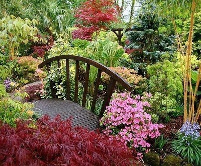 Serene garden... um can I get this in my backyard?!