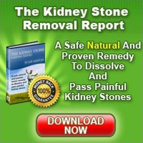 THE KIDNEY STONE REMOVAL REPORT REVIEW  BY JOE BARTON