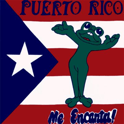 image of puerto rico flag