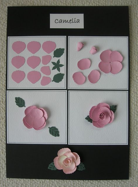 A Passion For Cards: Tonic Studios Punch and Stamp Instruction boards. Set 2 - 701e Camelia