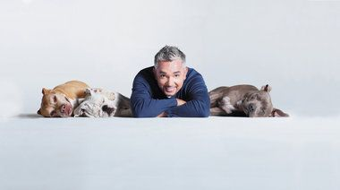'The Dog Whisperer' offers his tips on Saturday, but no dogs allowed (bring your notebooks!).