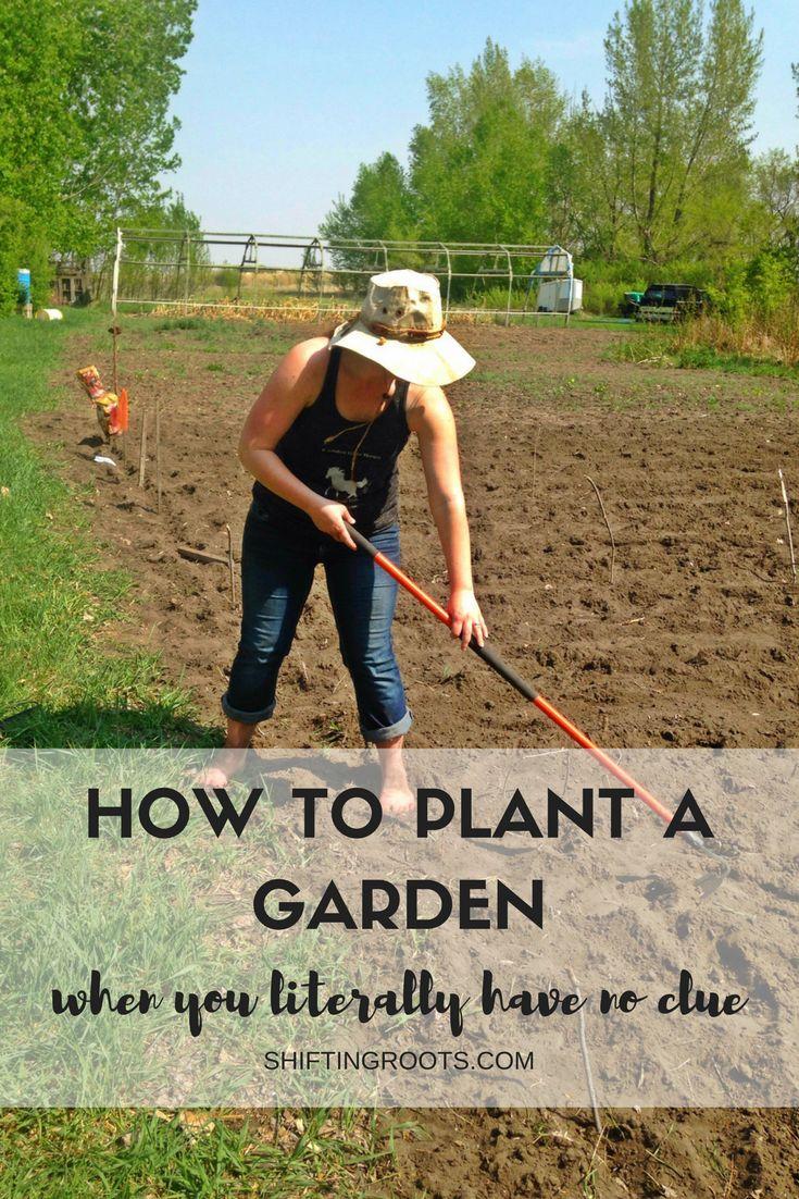 Coldclimate Gardening For Theplete Beginner