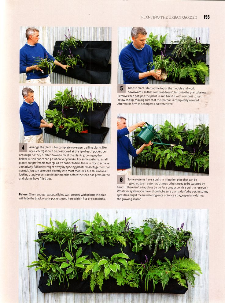 Green wall with recycled bags