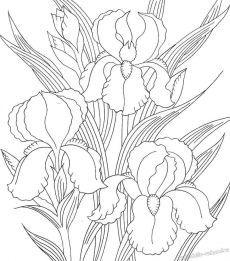 батик цветы ирисы - Поиск в Google