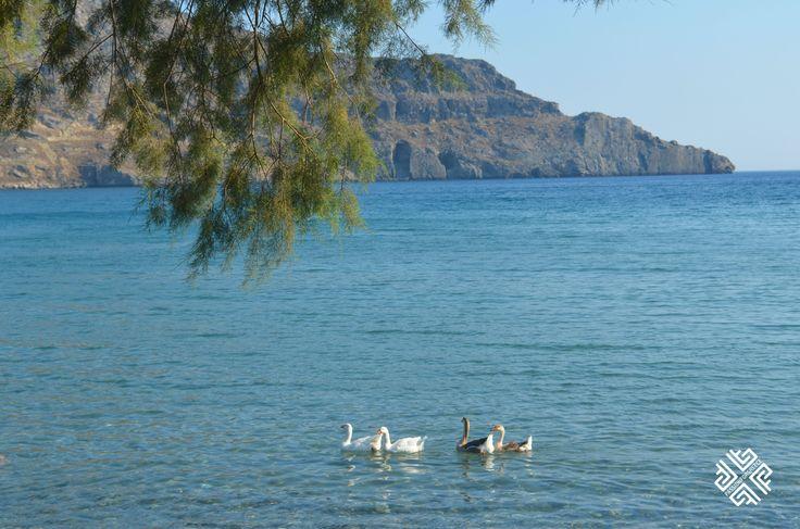 Plakias Beach, South of Rethymnon #rethymnon #crete #plakiasbeach #greece #passionforgreece