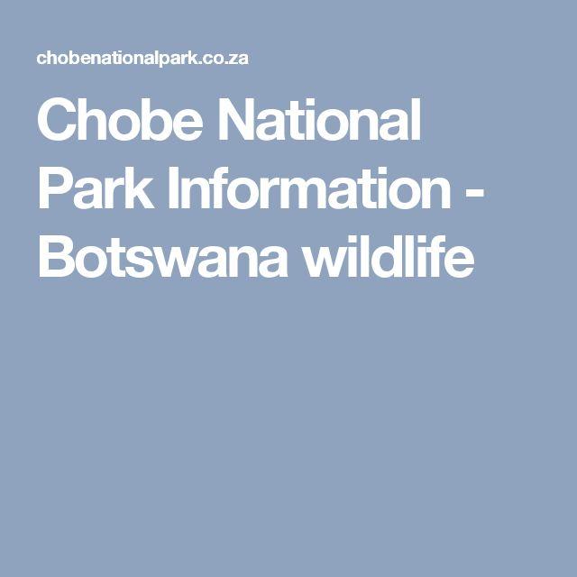 Chobe National Park Information - Botswana wildlife