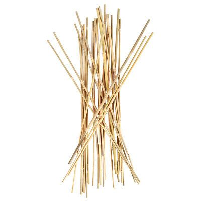 Plant Ties and Supports 181001: Smart Support Bamboo Stakes, 25 Pack -> BUY IT NOW ONLY: $42.26 on eBay!