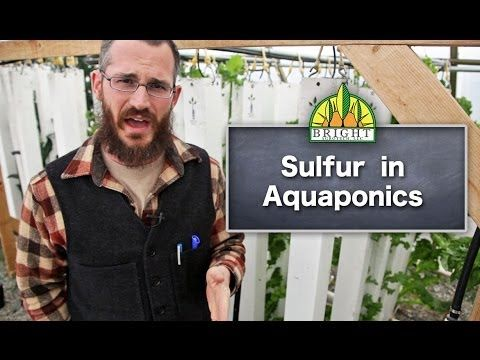 Sulfur in Aquaponics - Bright Agrotech: Sulphur is one of the secondary macronutrients and is very important to plant production. See more here!