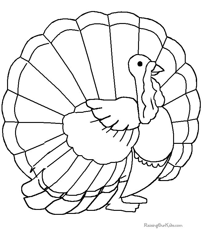 12 best thanksgiving worksheets images on Pinterest