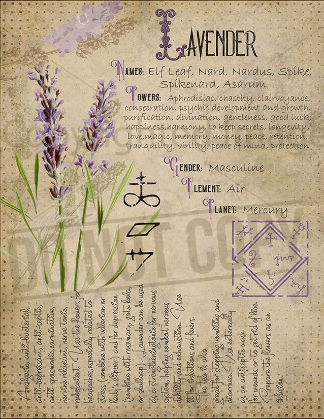 Book of Shadows, Printable pages of Herbs, Witchcraft