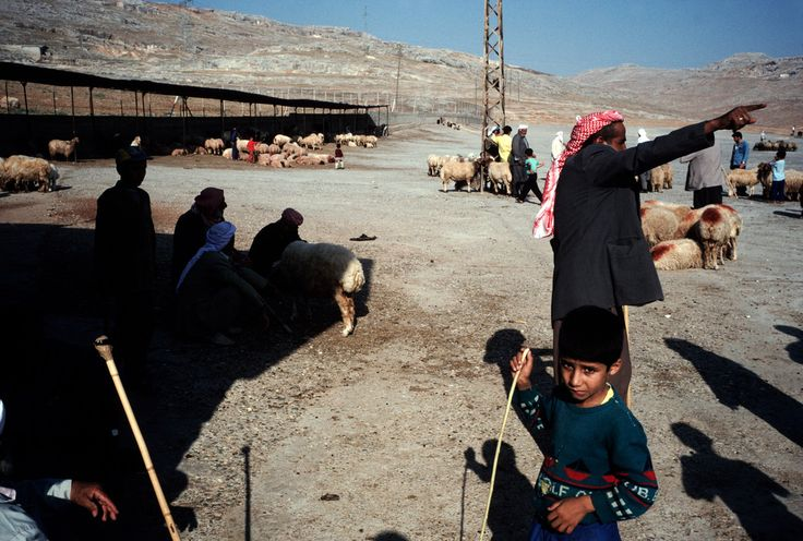 Alex Webb  TURKEY. Sanliurfa. 1998. A livestock market in the eastern part of the country that has a large Kurdish population.