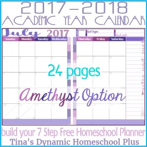 2017-2018 Academic Calendar – 2 Pages Per Month (Amethyst)