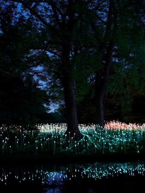 Puntos LED iluminan los Jardines de Longwood