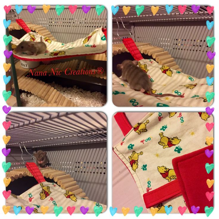 Rodent Hammock made in a variety of sizes to accommodate hamsters to chinchillas. Patterned fabric teamed with a luxurious anti pill fleece sold with hammock clips.