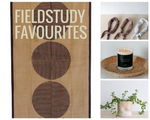 Fieldstudy Favourites from the Picot Collective Blog